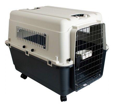 transportin perro viaje rigido homologado